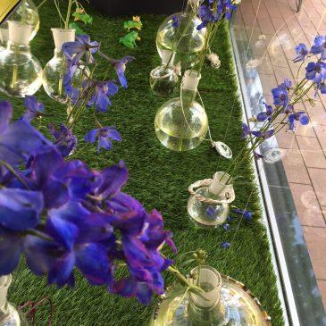 …glanzvoller Sommerschmuck & ultramarinblaue Sommerblumen…